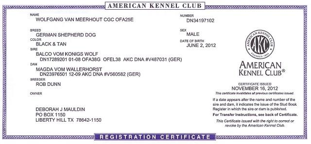 akcwolf